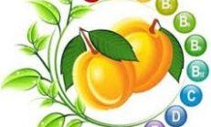 Vitamin eksiklikleri ve belirtileri nelerdir
