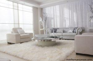 Beyaz salon modelleri